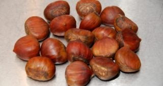 A pile of raw chestnuts sitting on a metal countertop.