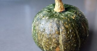 A kabocha squash sitting on the countertop.