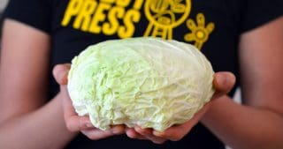 Stovetop Braised Cabbage by Michelle Tam / Nom Nom Paleo