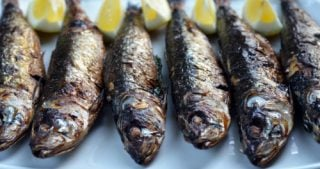 Broiled sardines on a plate.