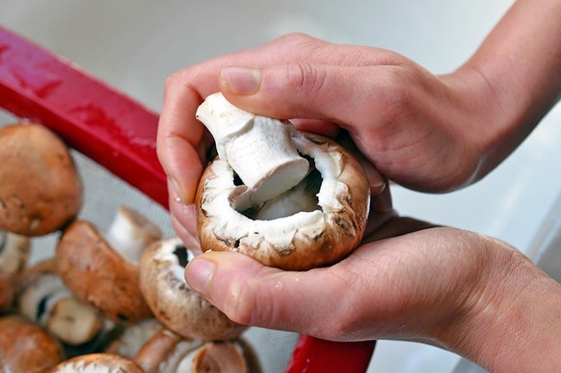 Close-up of someone removing the stem from a cremini mushroom.