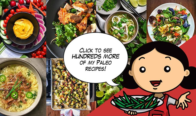 "A cartoon image of Michelle Tam saying ""Click to see hundreds more of my paleo recipes!"""