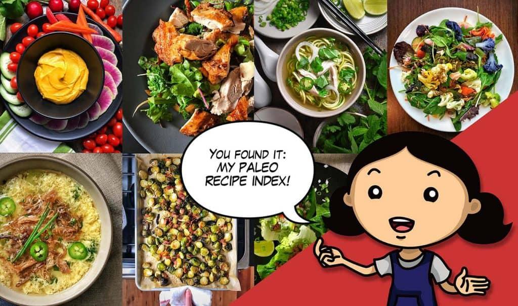 Paleo recipes 300 award winning paleo recipes by nom nom paleo nom nom paleo recipe index forumfinder Gallery