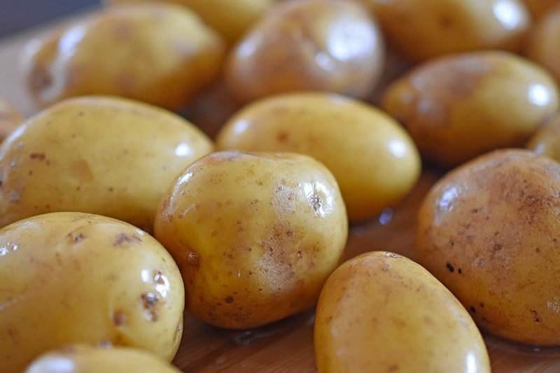 A closeup of small brown-skinned potatoes, freshly scrubbed