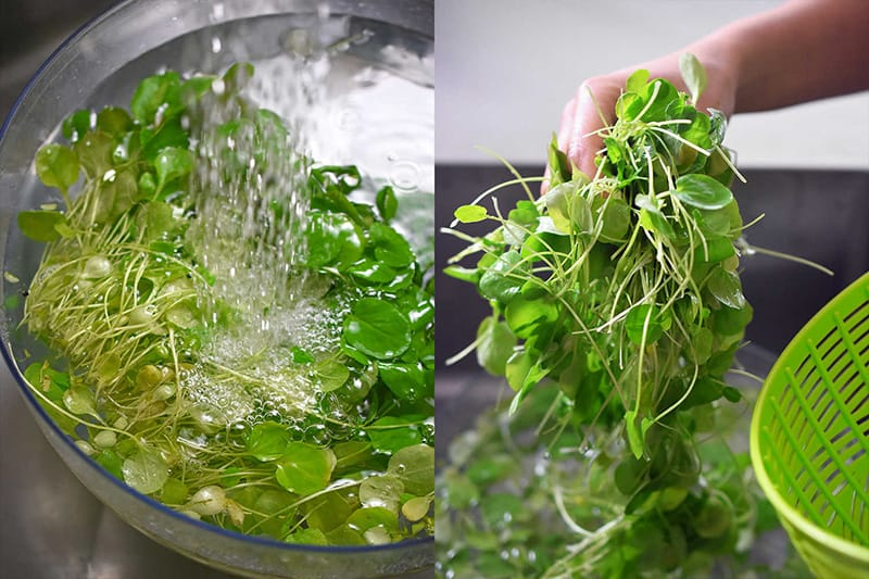 Washing young watercress leaves with water in a clear bowl.