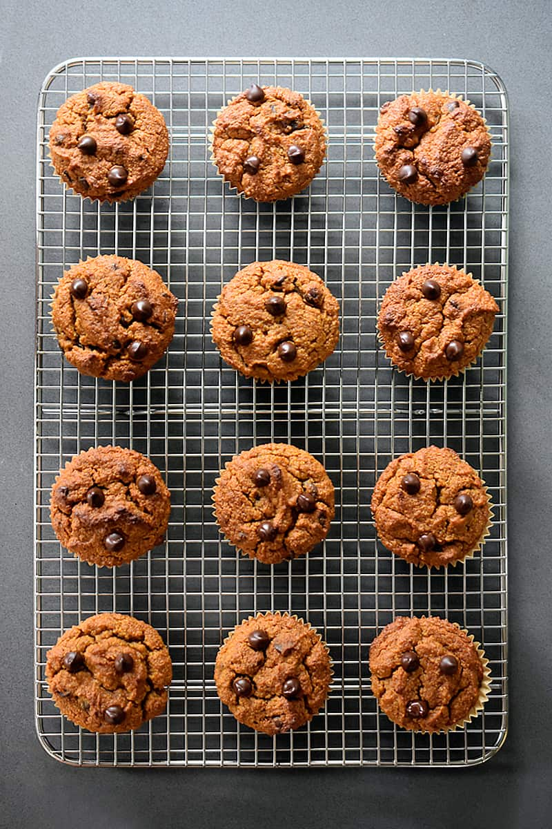Overhead shot of paleo, gluten free, and grain free pumpkin chocolate chip muffins cooling on a wire rack on a gray counter.